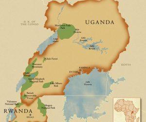 Följ med på FuG:s resa till Uganda och Rwanda i februari 2018